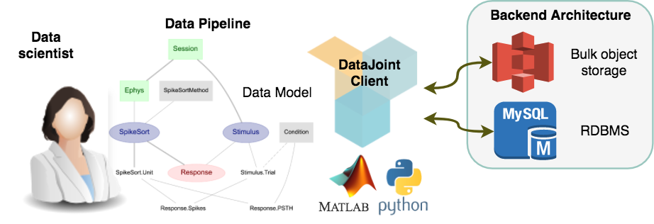 DataJoint operation